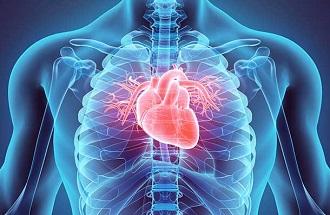Cardiology 2020 Egypt